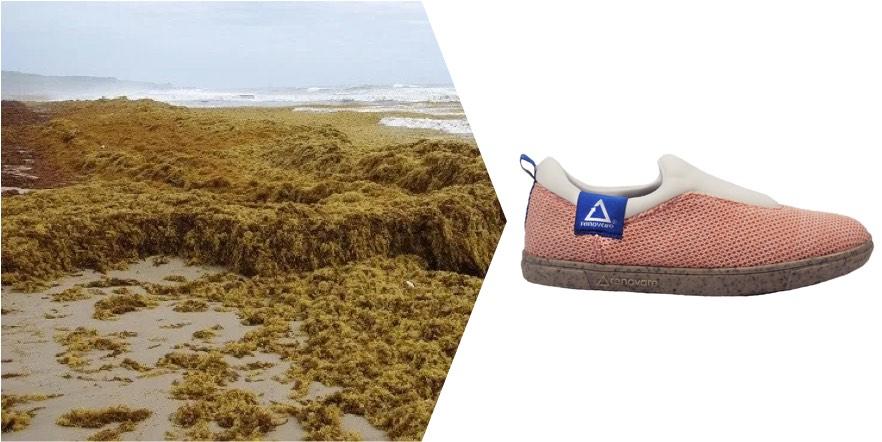 algae made into shoes
