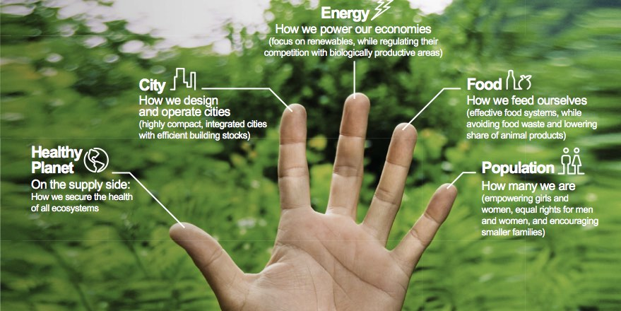 hand with five fingers each with description of how to reduce consumption