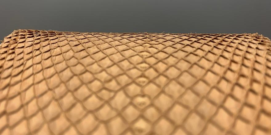 fishskin leather