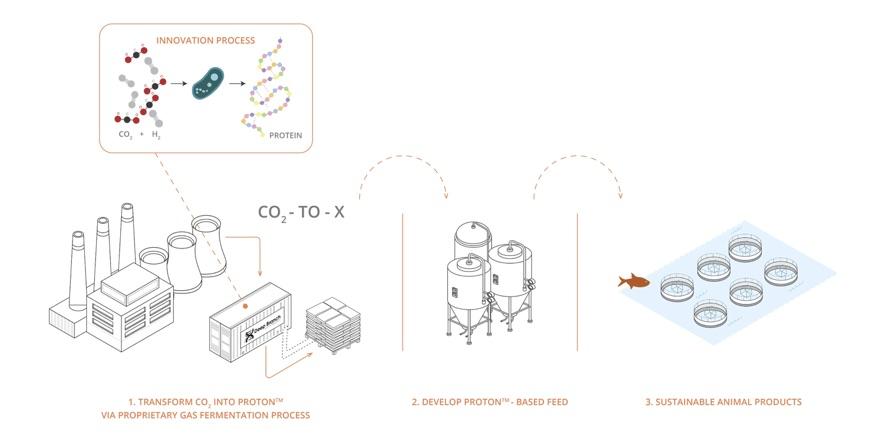 proton carbon process