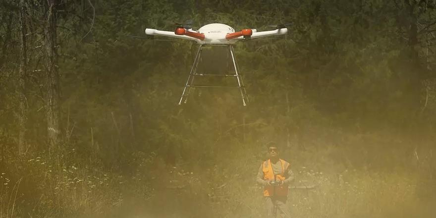 tree planrting drone
