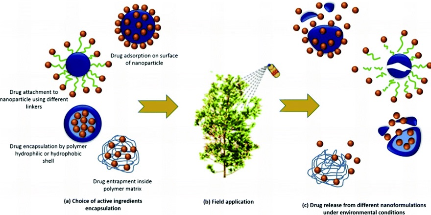 Nano particle pesticide