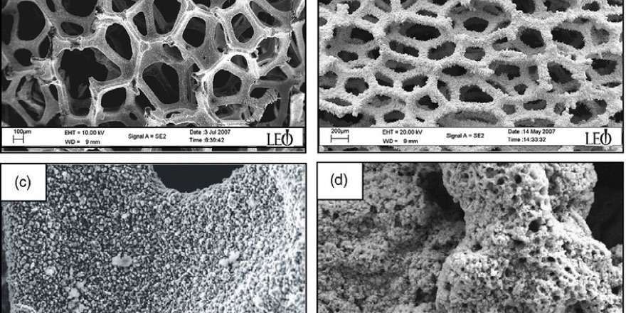 nickel foam catalyst
